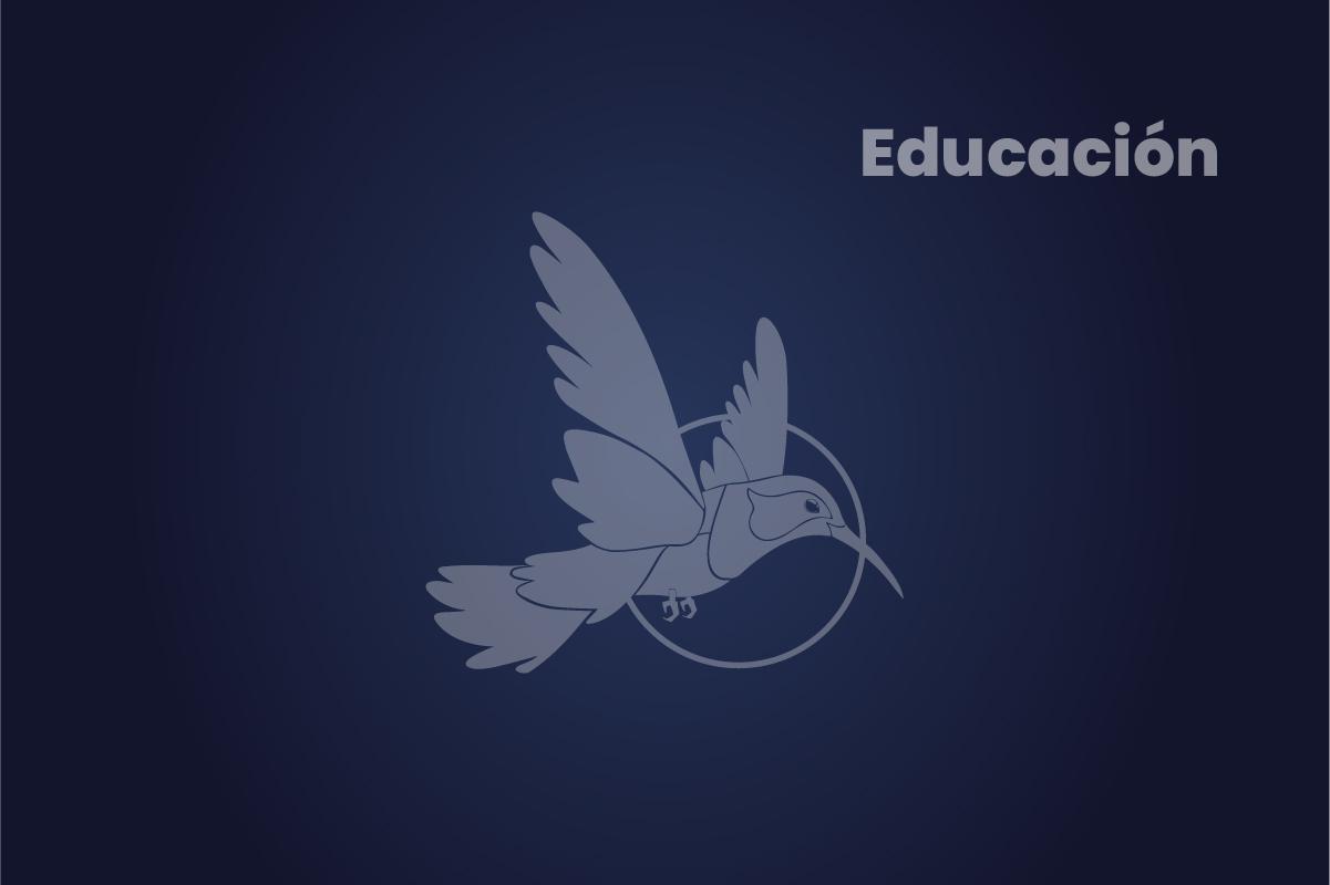 Xertify Top 5 Youtubers de E-learning en Español